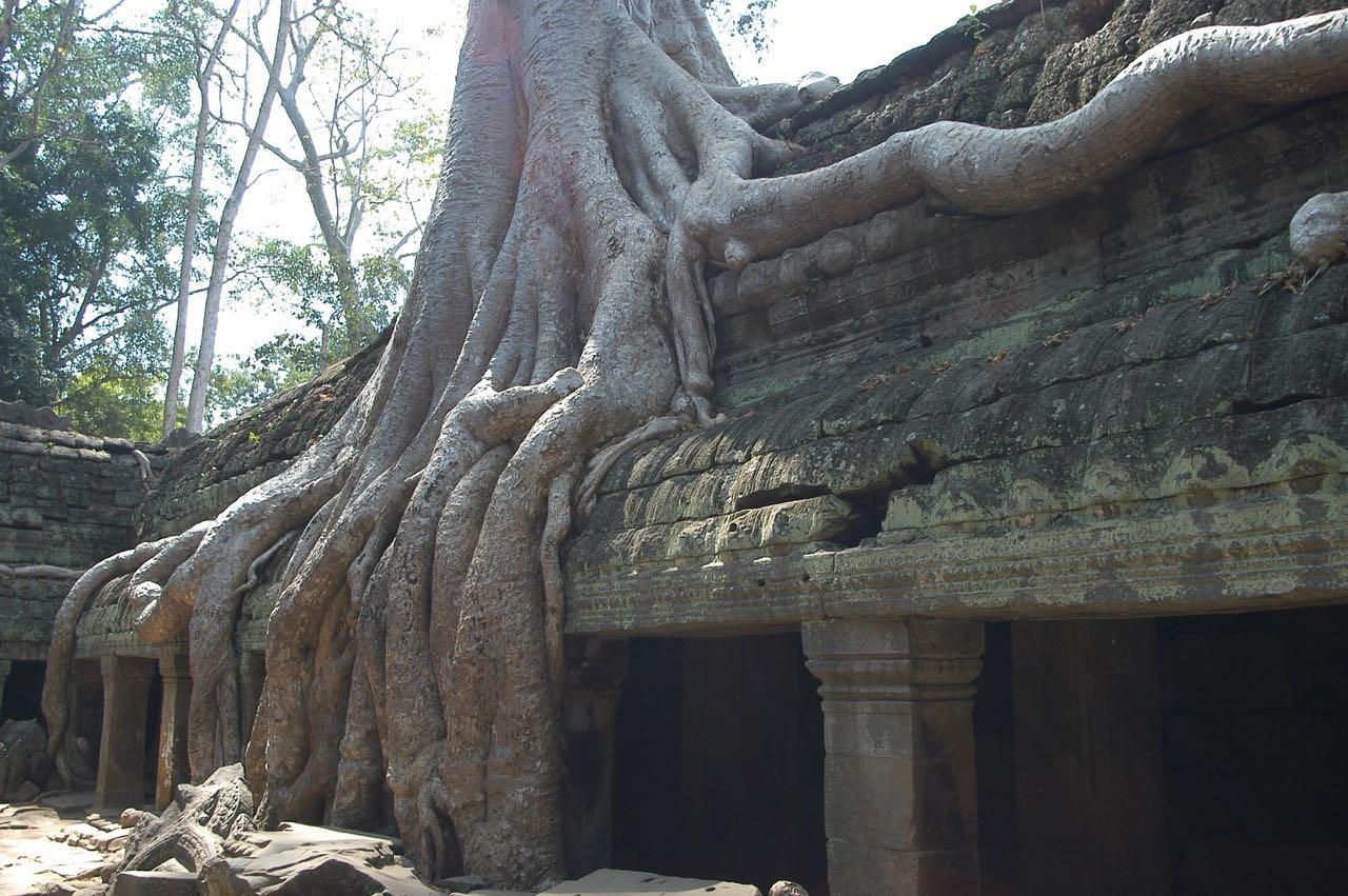RTW Cambodia DSC_0245
