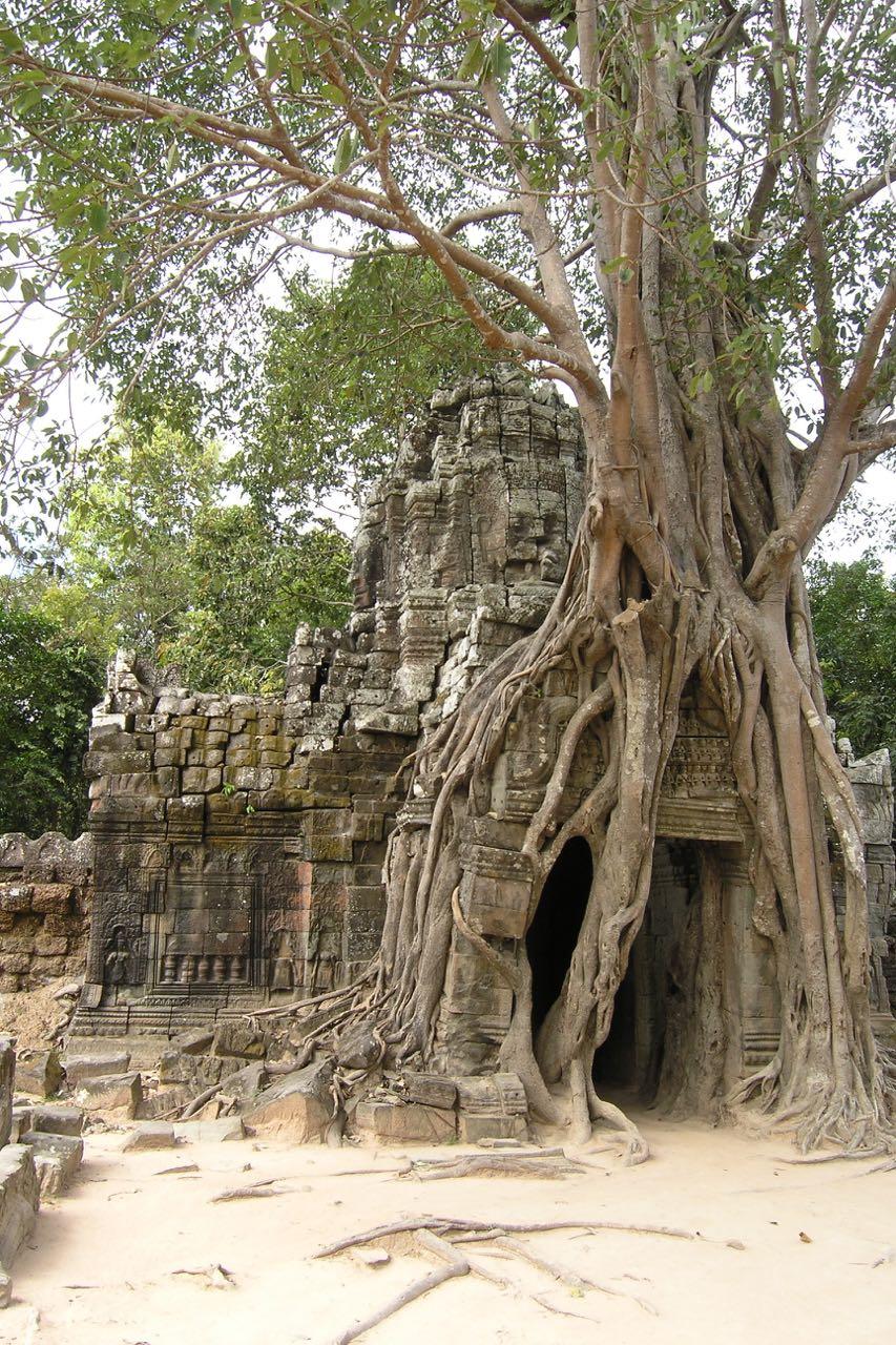 RTW Cambodia PB250119